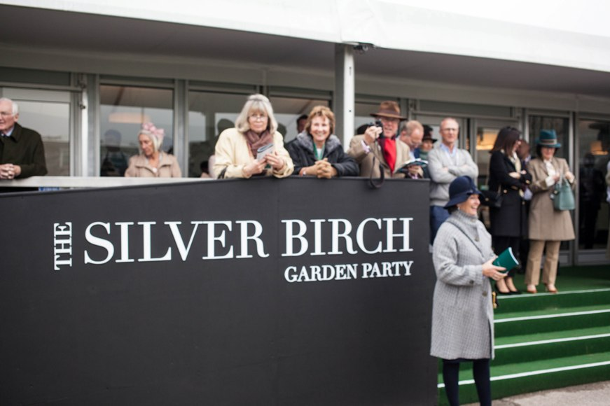 The-Silver-Birch-by-Arena-at-Aintree.jpg