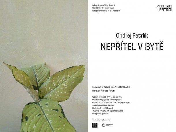 g1p-petrlik-el.galerie1patro-glr-detail-610x458.jpg