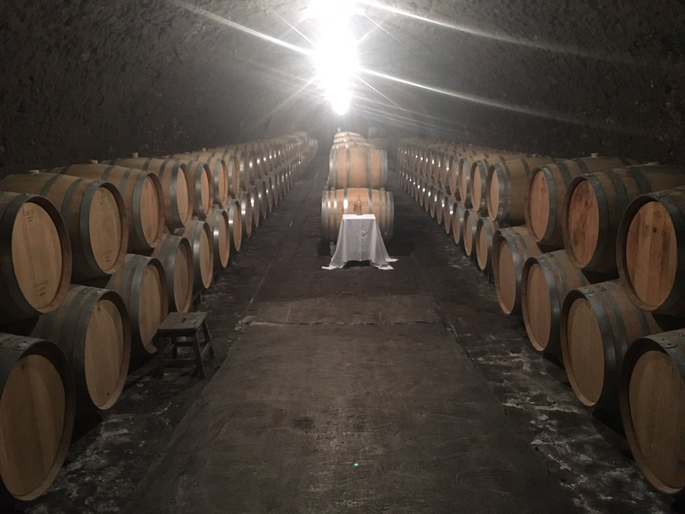 the cellar at Selosse