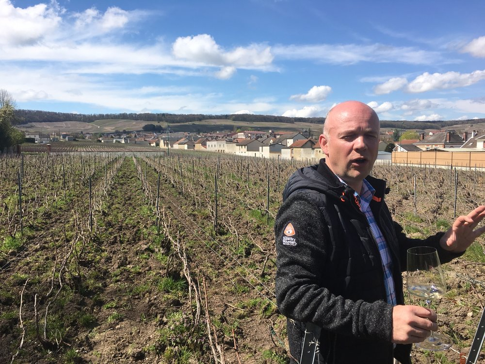 Pierre Amillet shows us around the estate vineyard