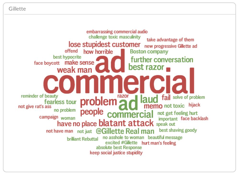 Gillette sentiment drivers (red: negatives, green: positives), all internet, Feb 2018 - March 2019
