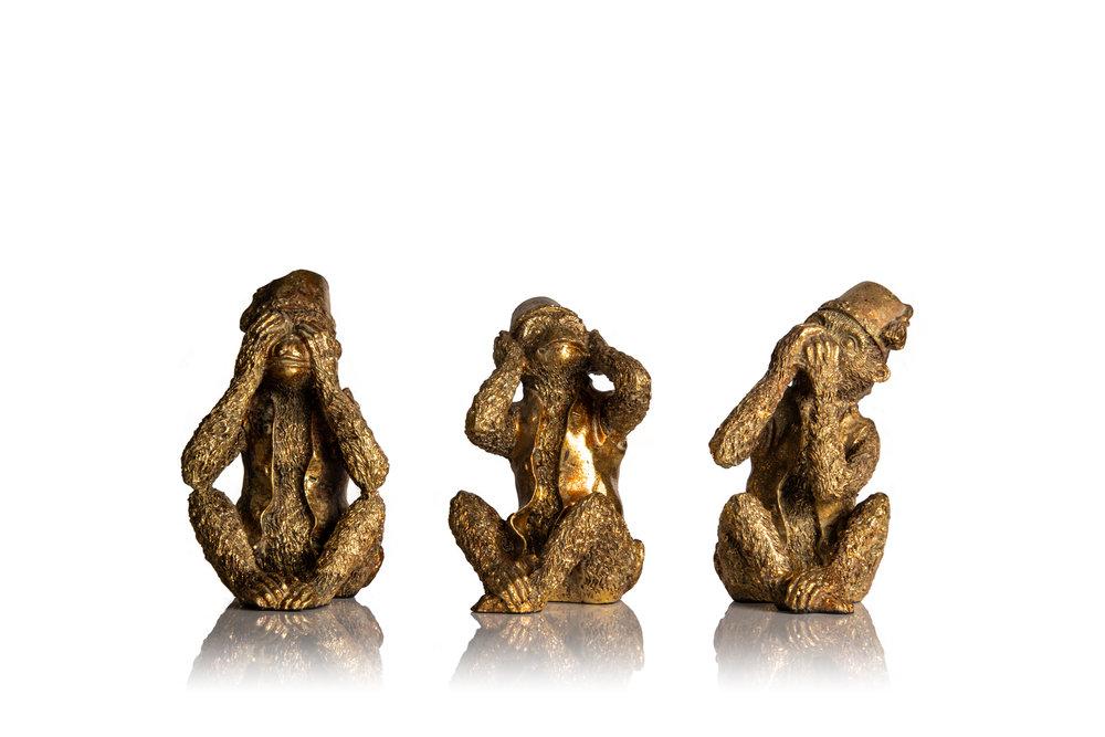 Monkeys-125-Edit.jpg