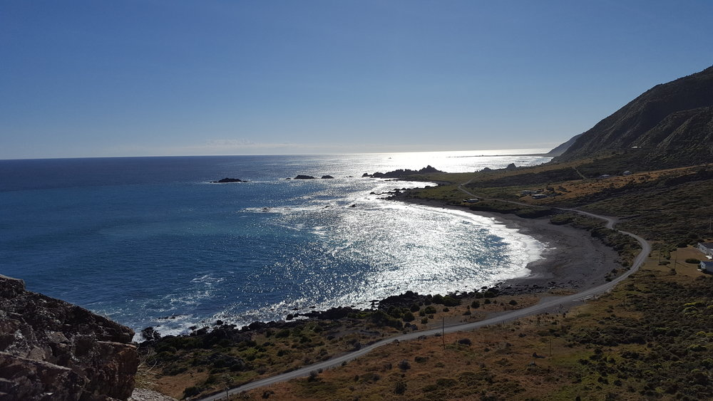 Wine and Wild coast 4.jpg