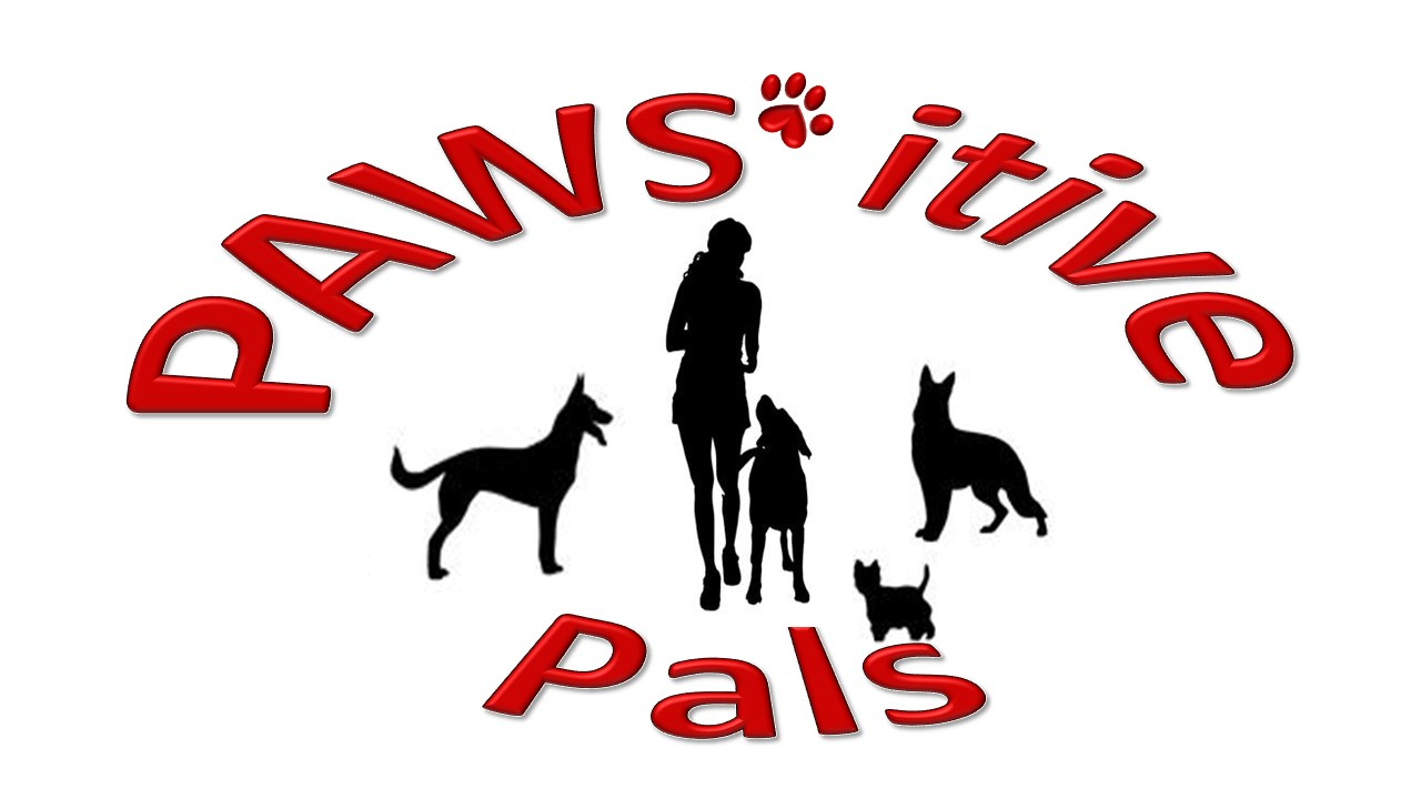 Services Pawsitive Pals Dog Training