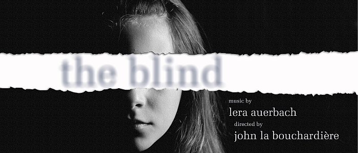 A poster for the 2013 performance. A black and white image of a woman's face, half of her face is obscured by shadow and her eyes are covered by a white strip with the words 'the blind' in a blurred font.