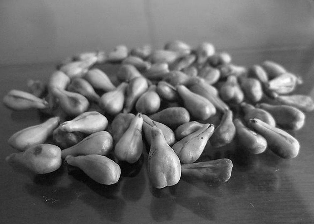 Ingrediënten - Alle producten bevatten hoogwaardige botanische ingrediënten en etherische oliën zoals Argan olie en Aloë vera.Vrij van parabenen en sulfaten en niet getest op dieren.