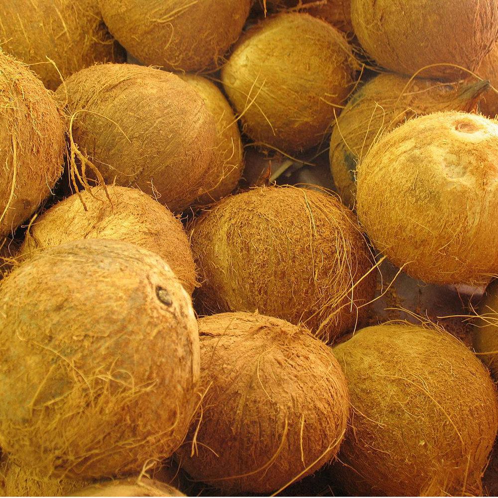 Kokosolie<strong>Kokosolie hydrateert het haar en geeft glans, glans en zachtheid. Het voorkomt haarbreuk en gespleten haarpunten.</strong>
