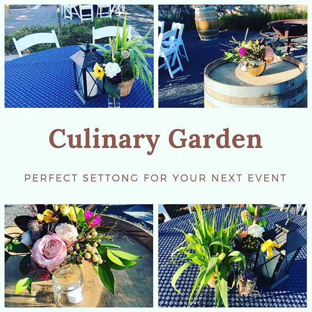 A favorite spot for an outdoor event, the Culinary Garden at @salamanderresort. We chose earthy greens & fall blooms on wine barrels #rusticdecor #culinarygarden #middleburg #salamanderresort #corporateevents #petalsandhedgesflorals