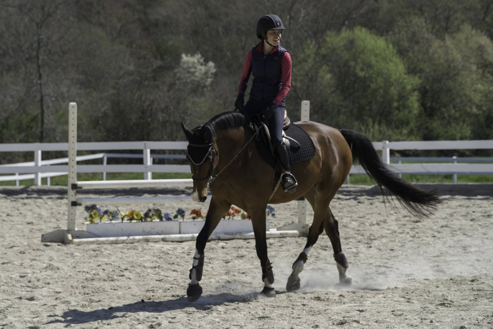 Nora Harris Equestrian horseback riding services