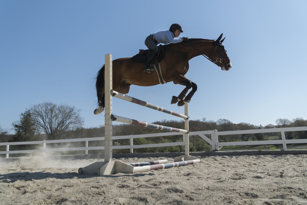 What's New? - Find out what's going on at Nora Harris Equestrian.