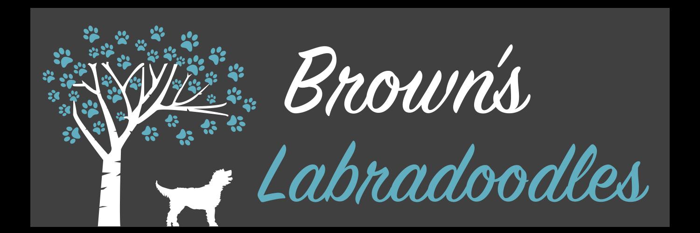 Brown's Labradoodles
