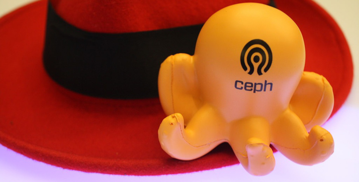D2SI_Blog_Image-CephJewel7-2.jpg