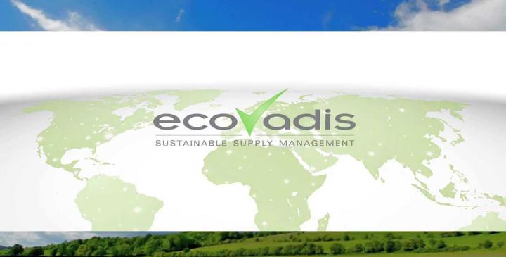 D2SI_Blog_Image_EcovadisGold_2017.jpg