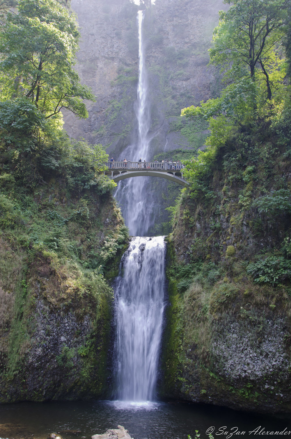 © 2012 SuZan Alexander  Multnomah Falls . Digital Photography
