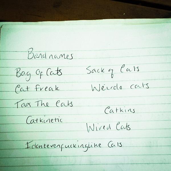 cat band names.jpg