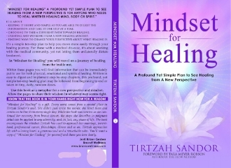 Mindset for Healing book