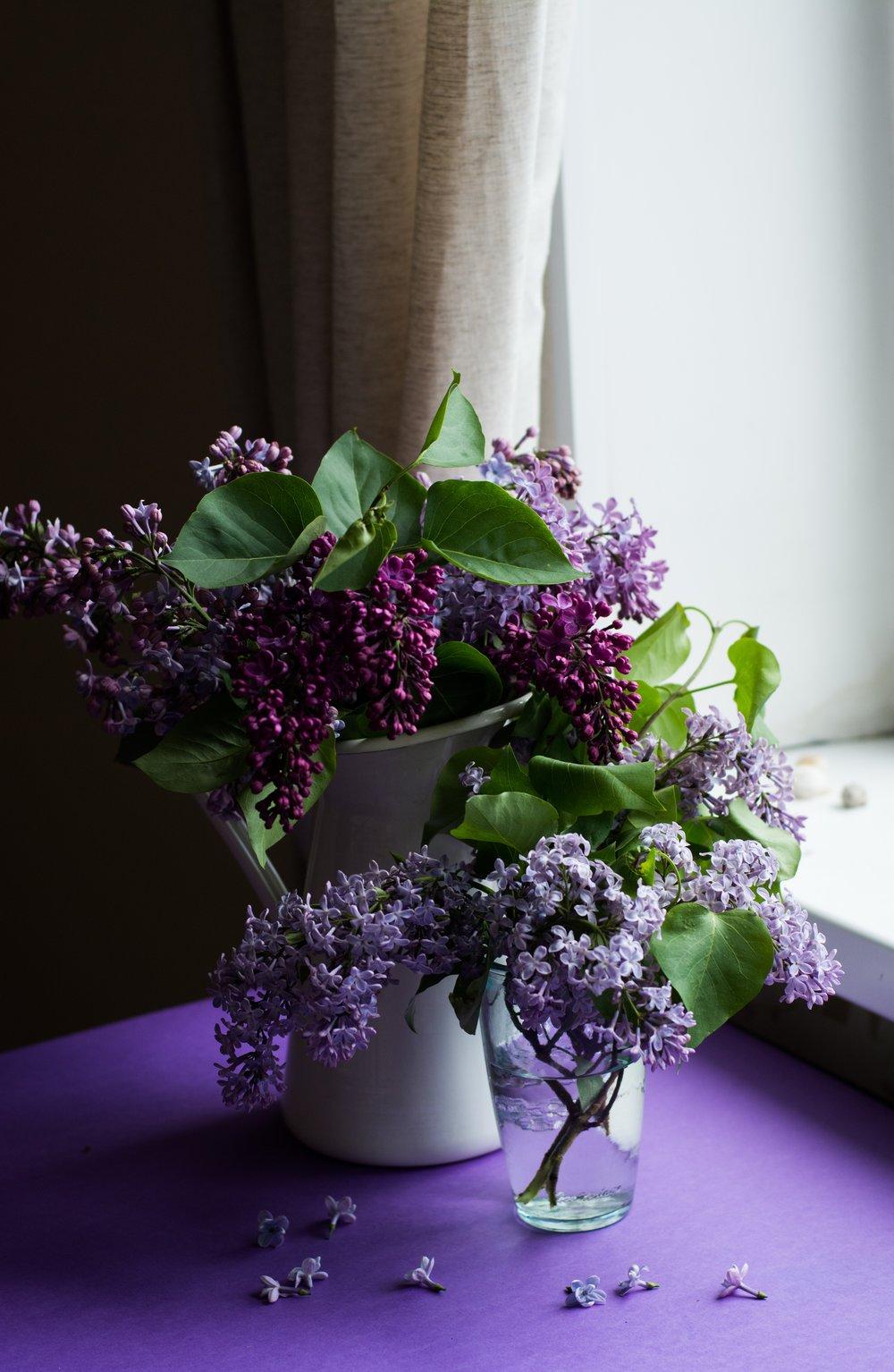 Tirtzah Sandor Health and Wellness Coach_purple bouquet.jpg