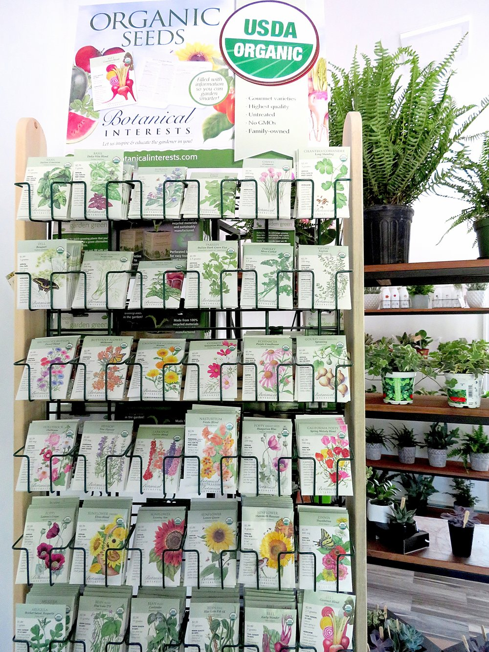 Weaver Gardens_Plants_Planters_Flowers_Garden_Gardening_Retail_Nursery_Home_Decor_Gifts_Larchmont_NY_Local_Shop_Planting_Landscape_Landscaping_Westchester County_Store_Shopping_Buy_Products_Services_Morano Landscape_Seeds