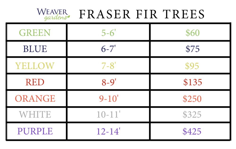 Weaver Gardens Christmas Tree Pricing.png