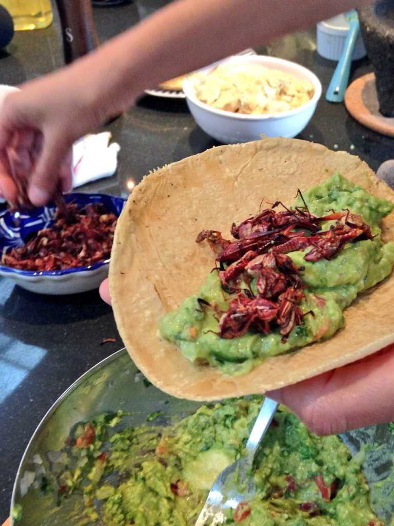 Copy of Chapulines taco with guacamole