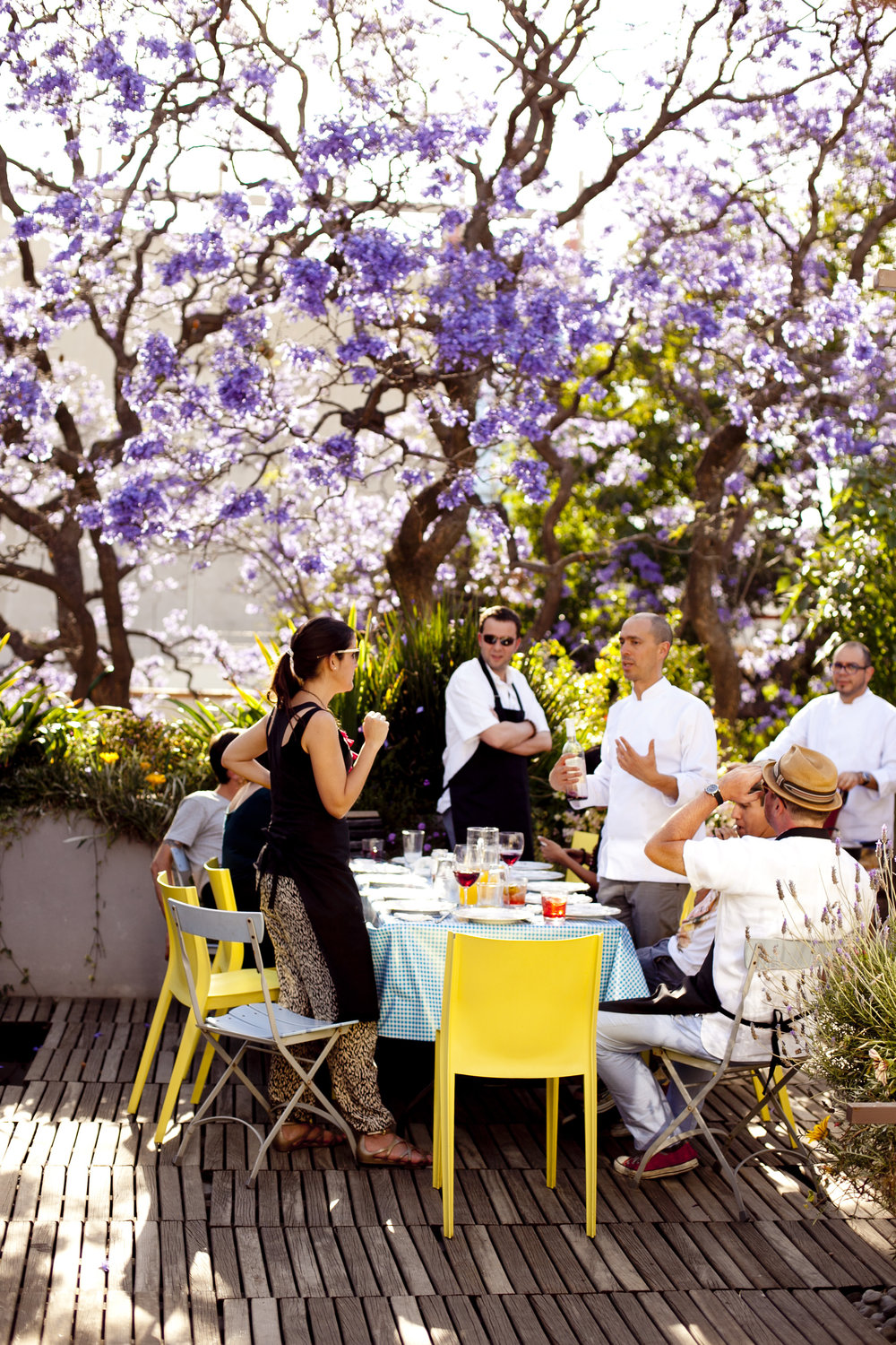 group of people eating lunch under a jacaranda tree