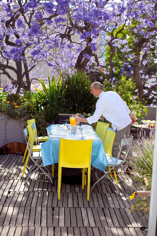 setting a lunch table beneath a jacaranda tree