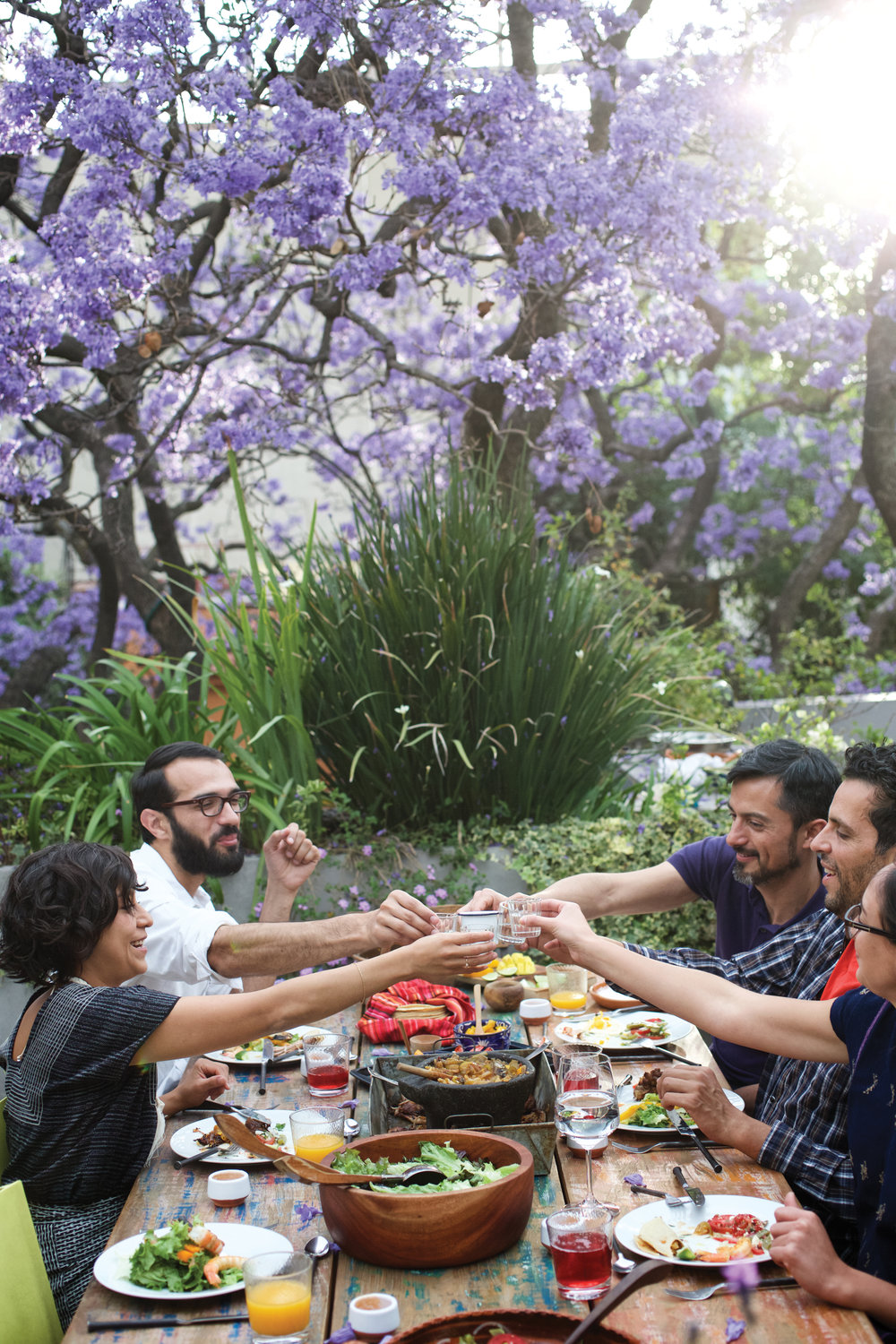 group saying cheers at a lunch under a jacaranda tree