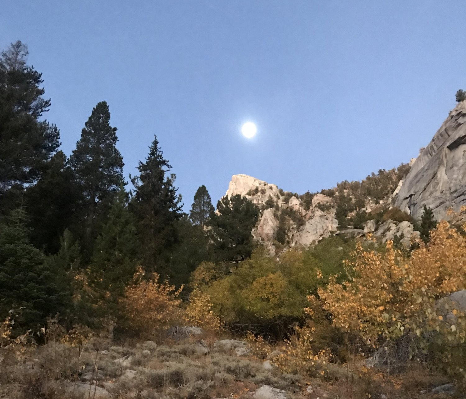 Morning Moon - Sierra Nevada.
