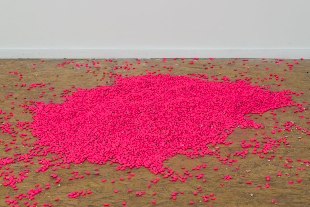 Alexis Disselkoen  untitled (beans) , 2017 pinto beans and acrylic paint dimensions variable