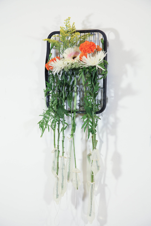 Camille Schefter  Stopover ,2017 dish rack, flowers, condoms 14 x 11 x 4 in.