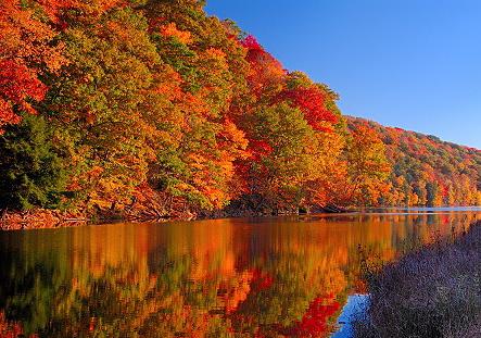 fall scene.jpg
