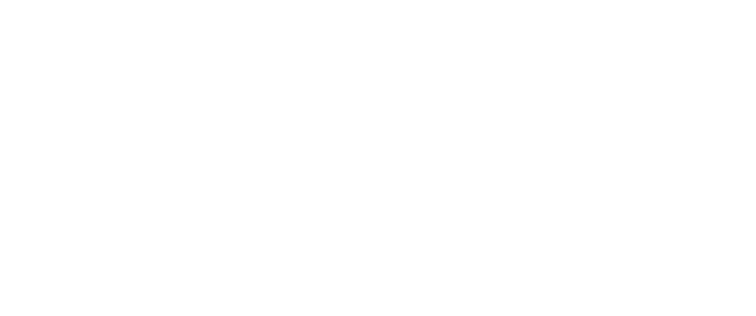 Bighorn Mountain Guides