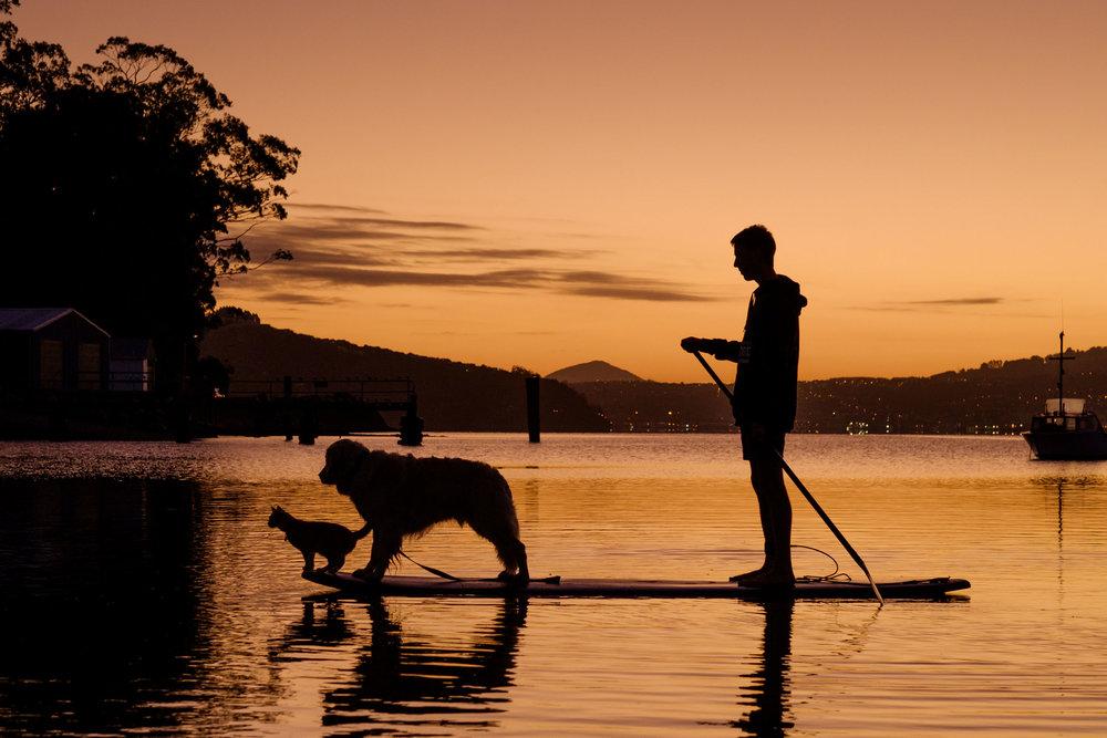 Macandrew Bay, Dunedin.