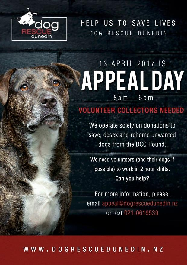 Dunedin Dog rescue support