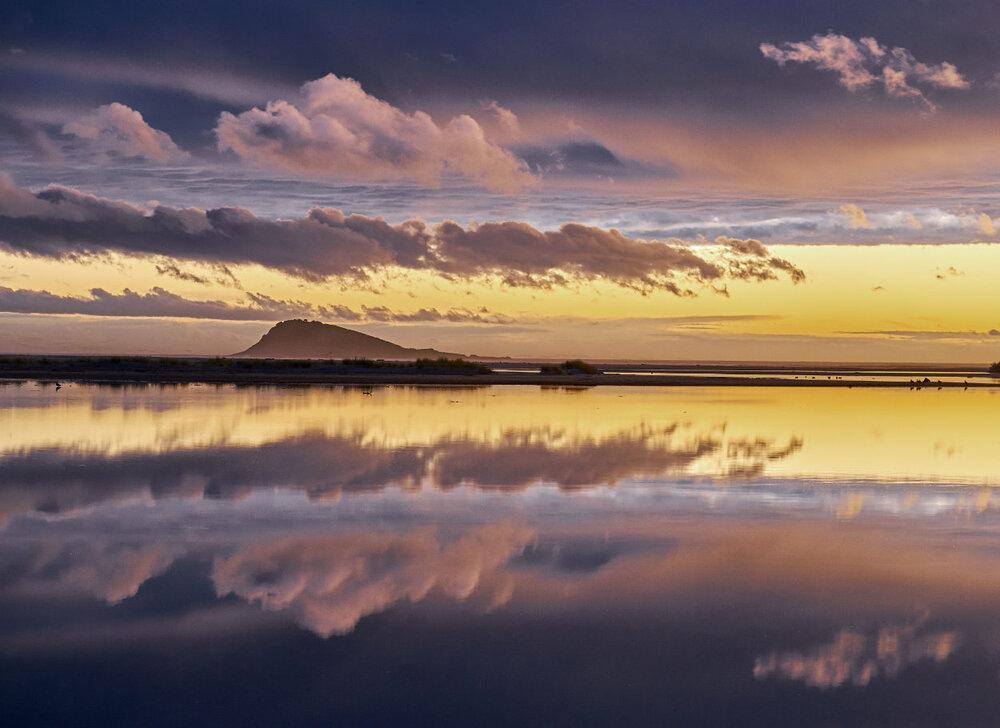 Green Island, Wardronville beach, Dunedin.