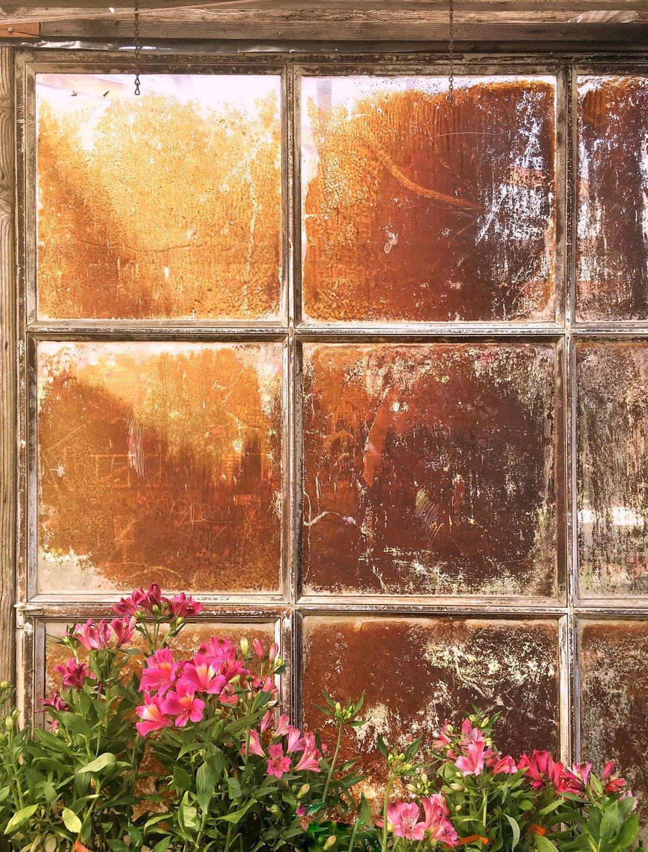 Window into Opacity