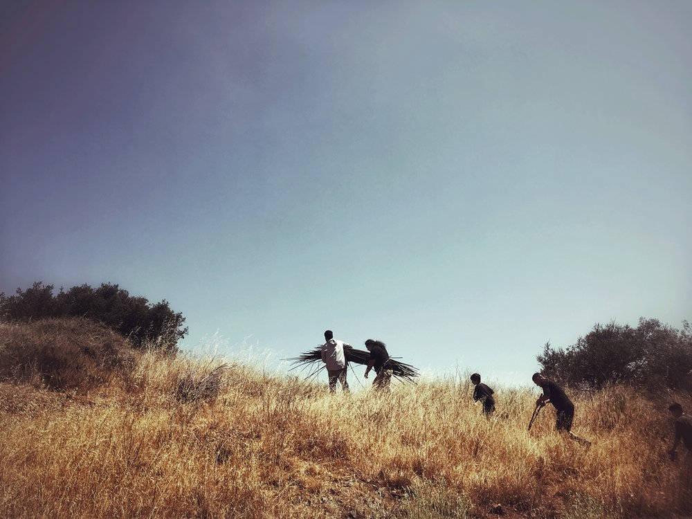 Carrying the Tule Up the Ridge