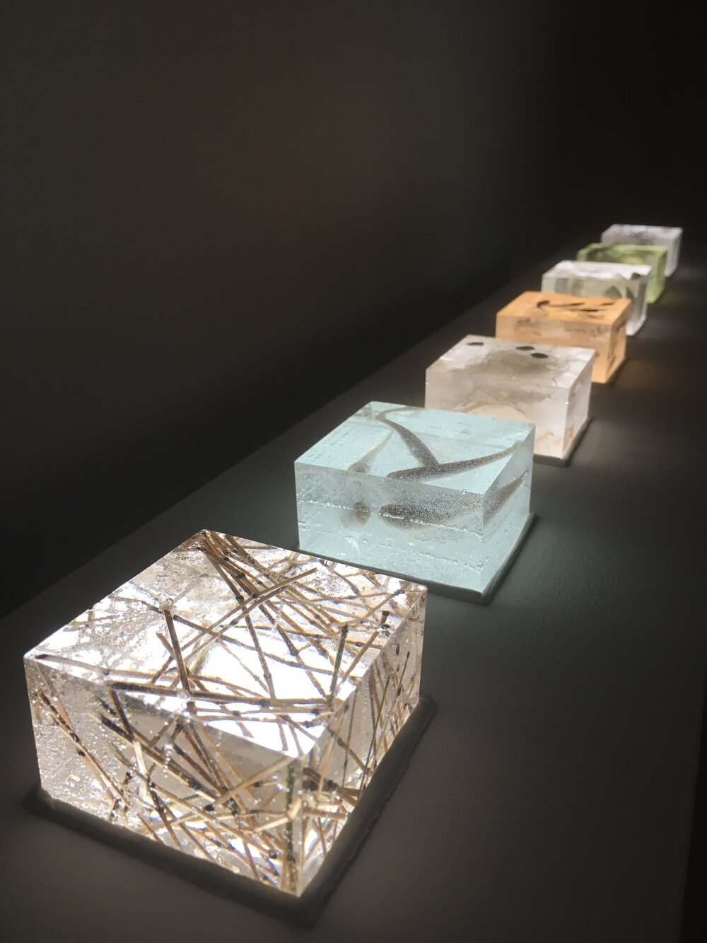Primordial Waters, Above and Below   Resin cubes with detritus