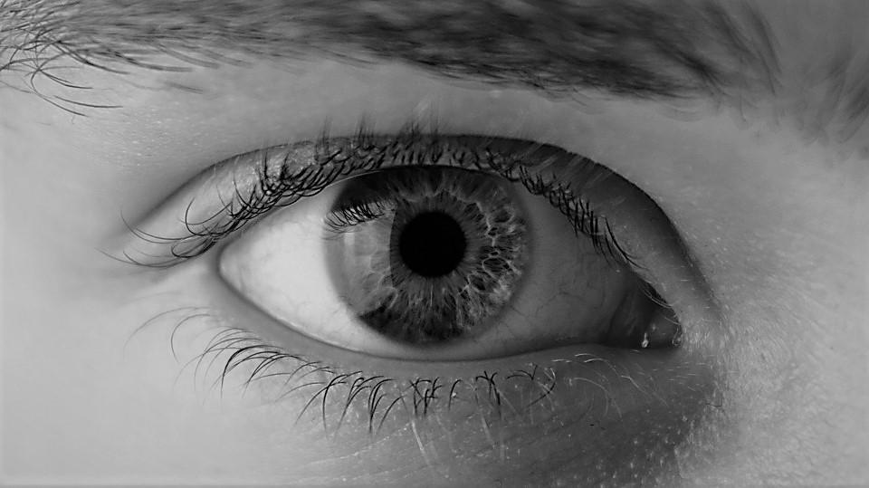 eye-2154384_960_720 (2).jpg