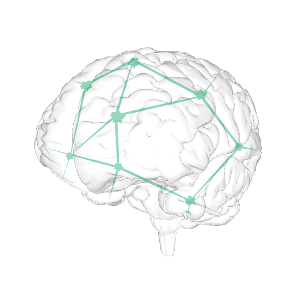 icon_brain.jpg