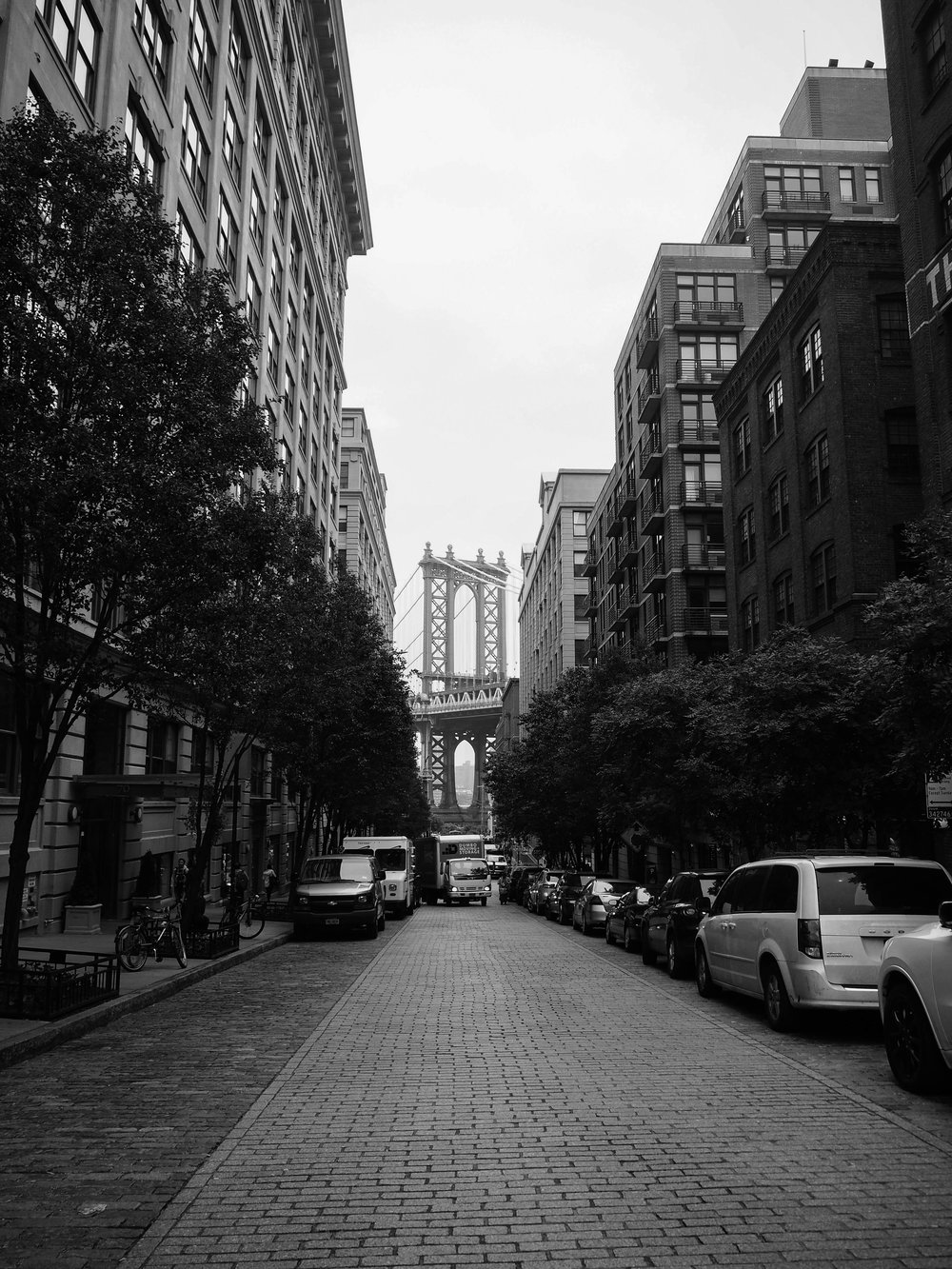 Dumbo on Parker Journal