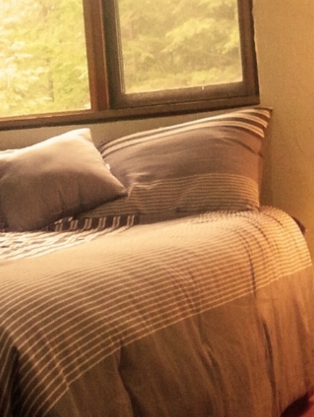 PACKAGE 2 - SHARED ROOM W/ SHARED BATH  Features: 3 Gourmet Meals per day, Activities, Shared Bath, Forest Views, Twin Size Beds              PKG 2 $1899.00 CDN/ Per Person