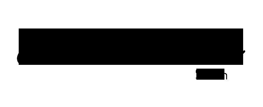 Summerishere.online logo