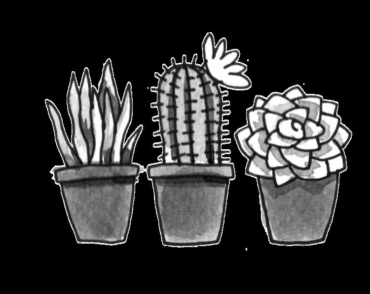 Plant Shop