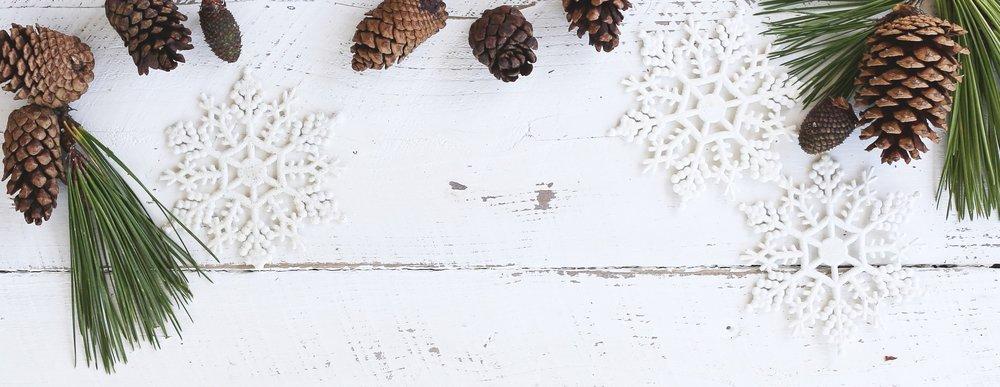 christmas-conifer-cone-decoration-639110.jpg