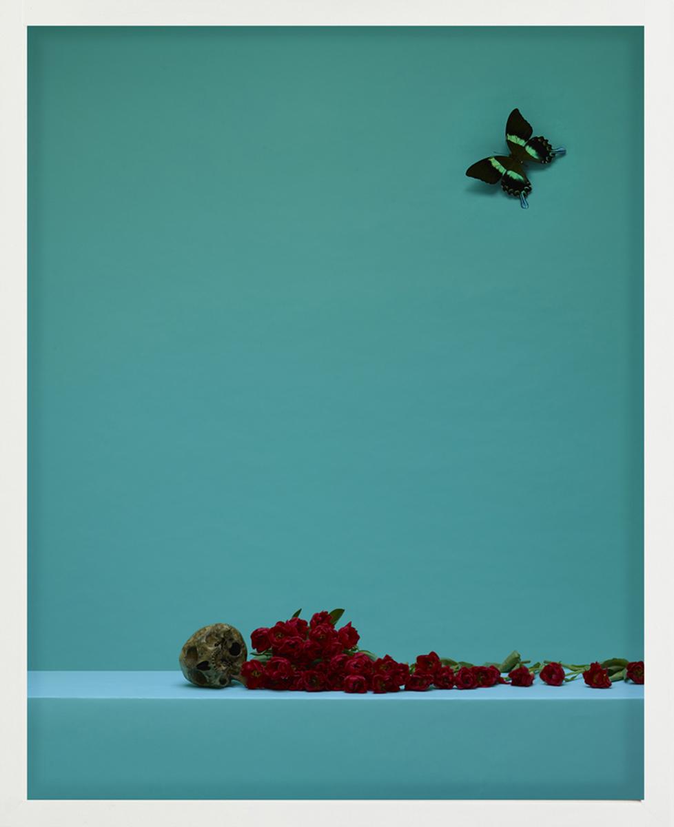 Satoshi Saïkusa,  No-Zarashi , Tirage d'archive à encre pigmentaire et papillon, 2017. Courtoisie de l'artiste et Galerie DA-END.