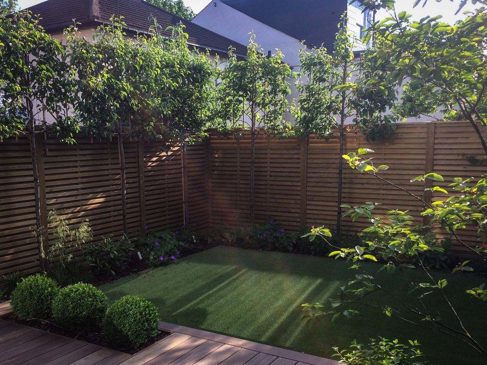 Azara-landscapes-acton-garden-design-1.jpg