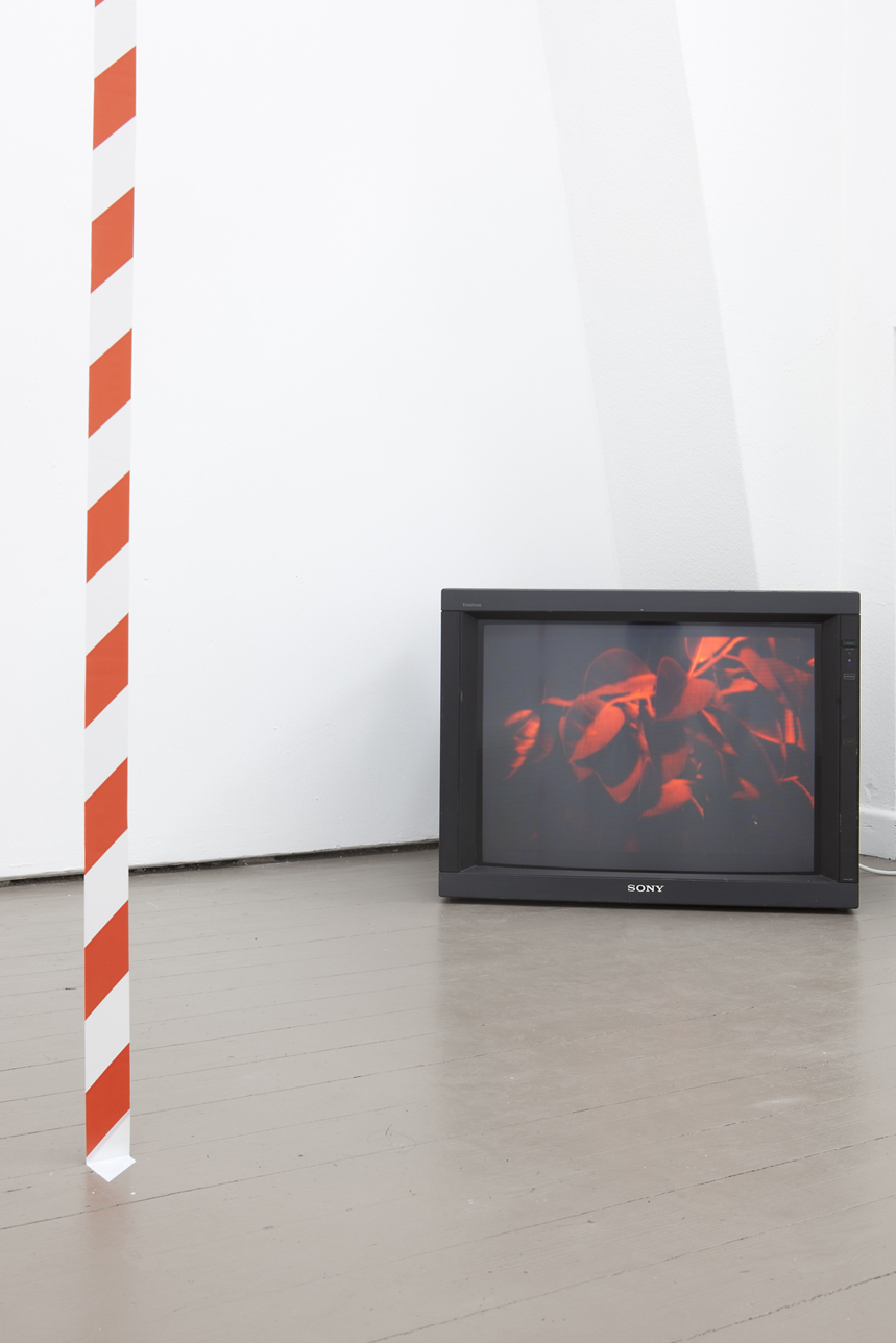 MG 2011 Traficuselastica Installation view_03.jpg