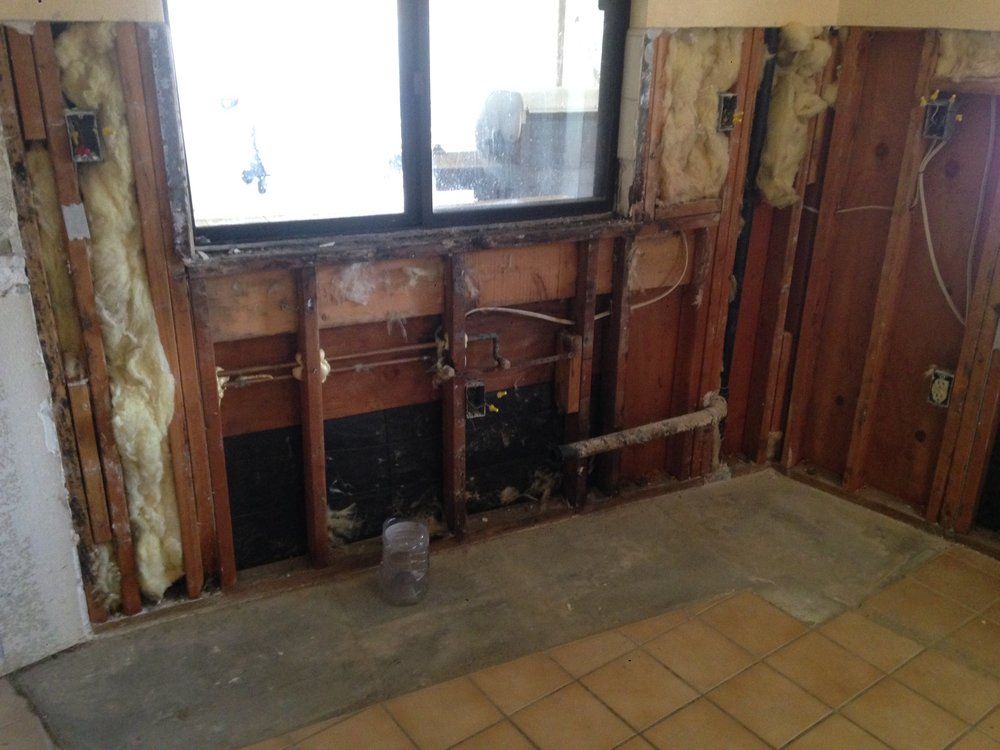 In Progress - Drywall Removed