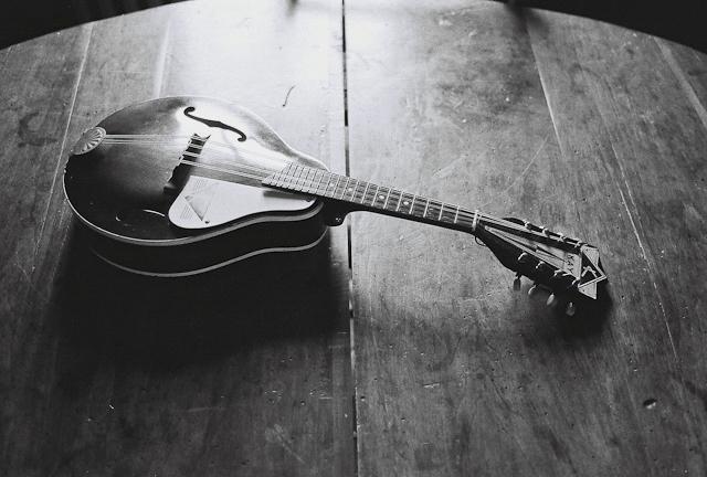 Mandolin-min.png